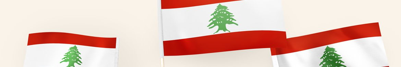 L'EHESP solidaire de l'ESA de Beyrouth